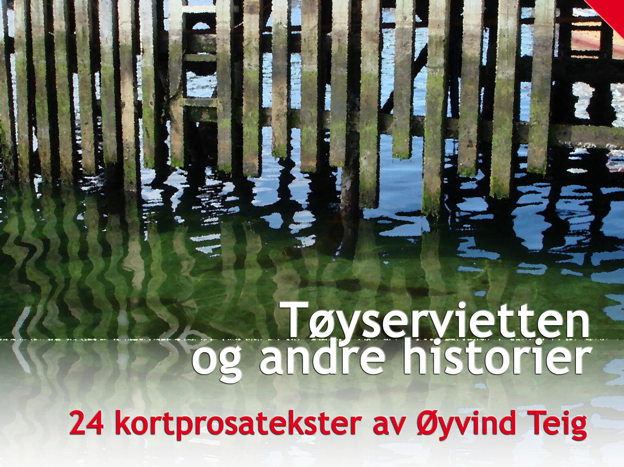 Tøyservietten og andre historier (2008)