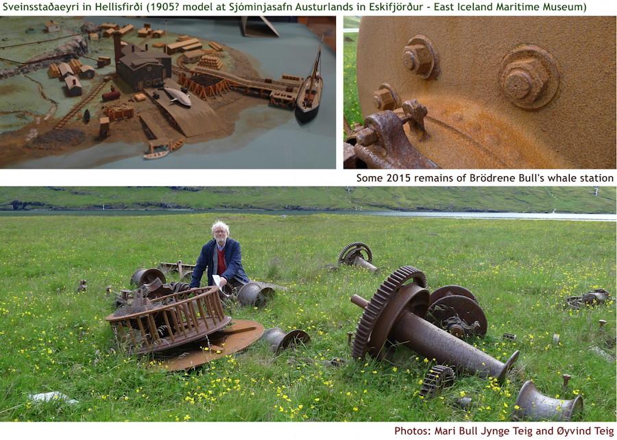 106_fig1_sveinsstaðaeyri_in_hellisfirðiphoto_brödrene_bull's_whale_station_bull_&_teig_x900