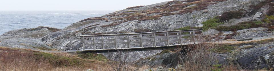 Øyvind Teig